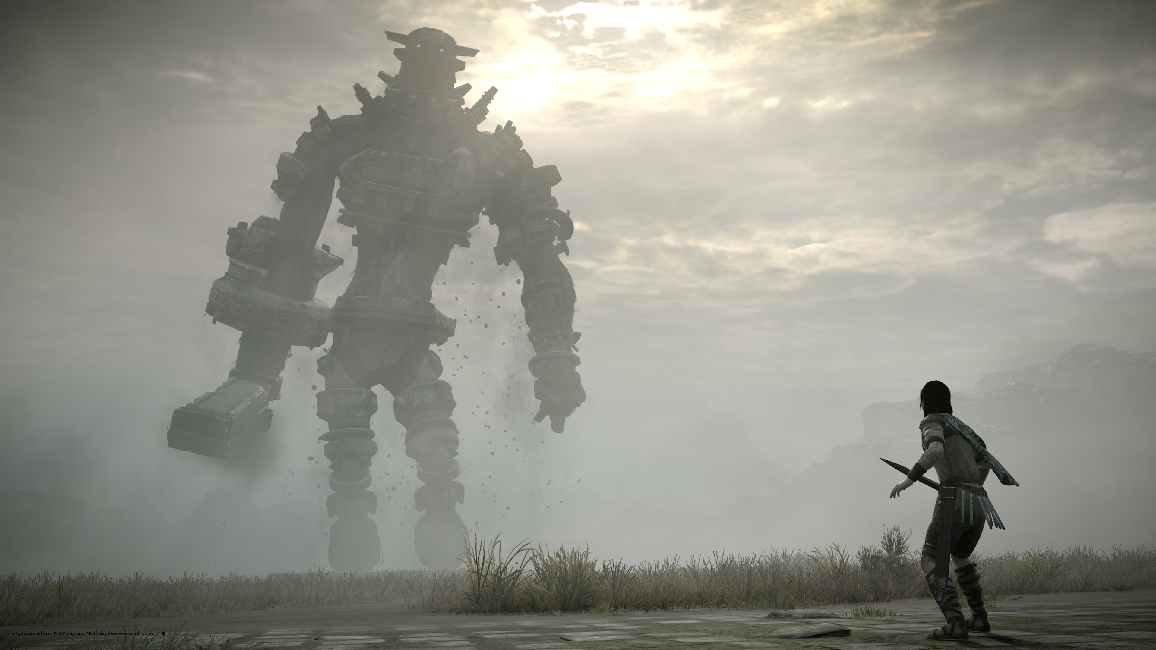 Shadow of the Colossus,